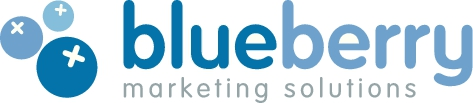 visit Blueberry Marketing